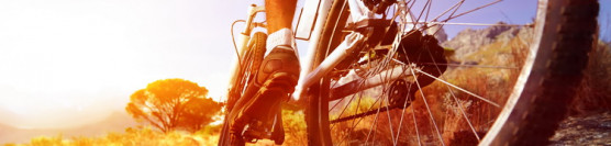 Wypożyczalnia rowerów górskich i trekkingowych. <strong>Prosimy o rezerwacje z wyprzedzeniem !!!</strong>