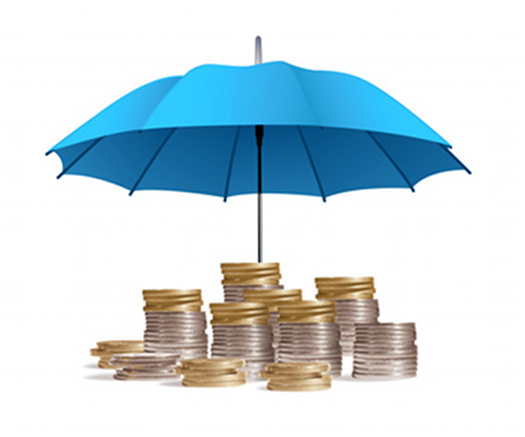 Protection of capital. Umbrella funds.